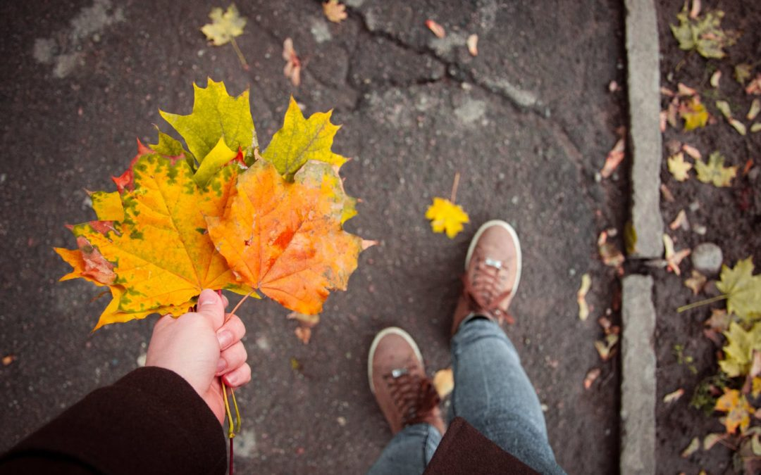 FALL-ing Out of Summer – Best Autumn Activities in Chicago